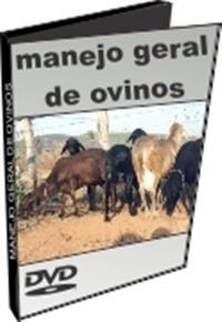 Manejo Geral de Ovinos - DVD