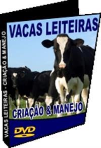 Vacas Leiteiras - Criação e Manejo Reprodutivo - DVD