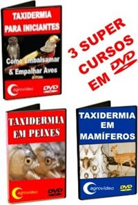 Kit - Taxidermia em DVD