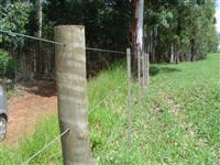Mourão de eucalipto tratado Sudoeste Paulista 2,20m x 10-14cm
