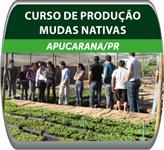 Curso Prático de Produção de Mudas Nativas - Apucarana/PR
