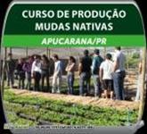 Curso prático de produção de Mudas Nativas.