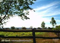 Fazenda 1.160 hectares em Goiás