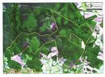 Fazenda Guanabára - Reserva do Cabaçal