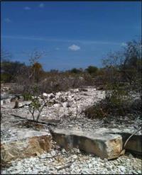Reserva mineral de Calcário Calcítico