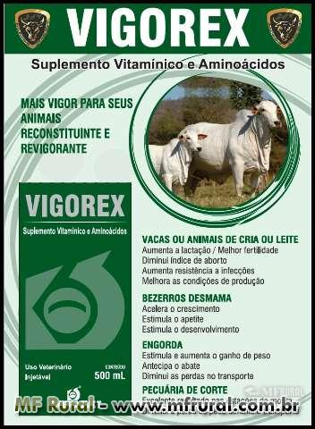 VIGOREX EXPLOSÃO E GANHO DE PESO