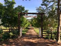 Venda permanente de bezerros e bezerras - Fazenda de cria/recria no sul de minas