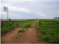 Fazenda no município de Uberlândia-MG