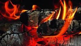 Carvão para churrasco eucalipto