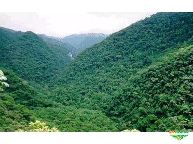 Area a venda para compensação ambiental no estado de são Paulo