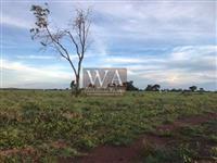 Fazenda com dupla aptidão na região do vale do Araguaia em Abreulândia-To