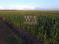 Fazenda na região do vale do Araguaia plantando lavouras