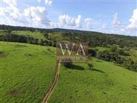 Fazenda toda pronta e montada excelente negócio próxima de Palmas Tocantins