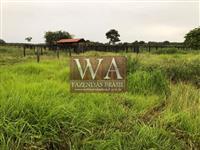 Fazenda no Tocantins com rio