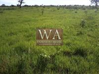 Fazenda com excelente topografia no Tocantins