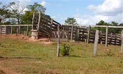 Fazenda excelente para pecuária no Tocantins