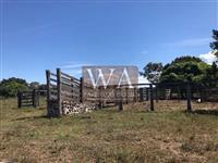 Fazenda para pecuária no Tocantins