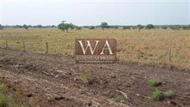 Fazenda com ótima localização excelente para agricultura