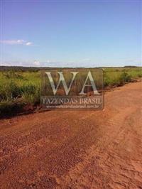 Fazenda toda desmatada e parte gradeada para lavoura em Araguacema Tocantins