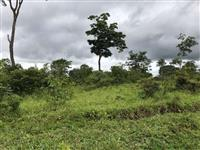 Fazenda pequena com de 60% em terras de cultura