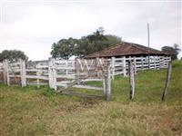 Fazenda as margens da BR 153 para Pecuária, fruticulturas, plantio de grãos e área para posto
