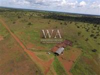Fazenda na nova fronteira agrícola do Tocantins