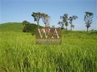 Fazenda muito bem localizada permuta em área com cana em SP, MG, GO e MT