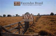 Fazenda com 63 alqueires em Miracema-To