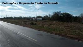 Fazenda na Matopiba, em Monte Alegre do Piauí - PI com 2700 hectares Pecuária