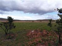 Fazenda Mista com 250 hectares Oportunidade