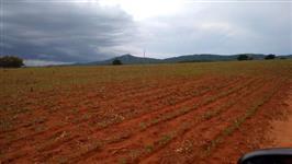 Fazenda em goias dupça aptidão