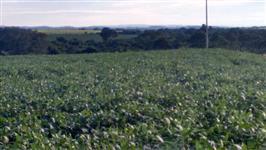 Fazenda para pivôs em Goiás