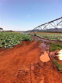 Fazenda em Goias pecuária e agricultura
