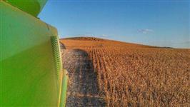 Fazenda Agropecuária 850 ha Planalto Norte de SC