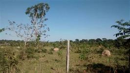 FAZENDA EM TABAPORÃ ENTRE SINOP E ALTA FLORESTA 7160 HA AGRICULTURA E PECUARIA