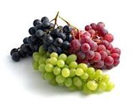 Mudas de uvas enxertadas produzem em menos de um ano
