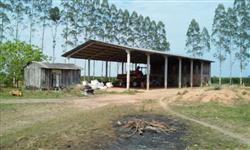 FAZENDA DE DUPLA APTIDÃO GADO/SOJA NA REGIÃO DE CEREJEIRAS -RO COM 1000 HECTARES