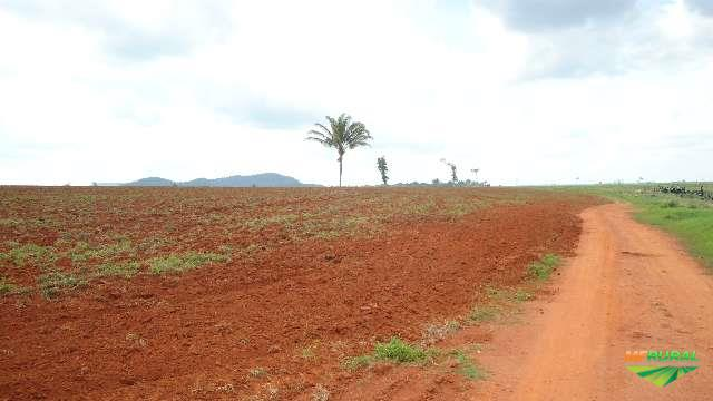 FAZENDA EM CEREJEIRAS RONDÔNIA DE TERRAS ROXAS COM ARGILA SUPERIOR A 50 POR CENTO