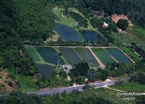 Vendo uma piscicultura com 10 tanquese 2 captação de agua.