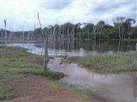 Fazenda de 1.355 hectares (280 alq.) em Abreulândia - To