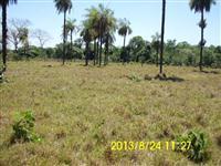 Fazenda de 1.597 hectares ( 330 alq.) Abreulândia-To