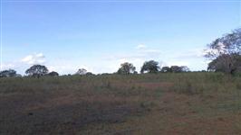 Fazenda de 350 alq.(1.694 há.) Dueré – To