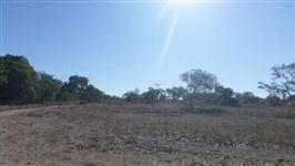 Fazenda de 130 alq.(629 ha.) em Santa Rita do Tocantins-To