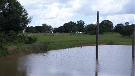 Fazenda de 370 alq. (1.790 ha.) Em Abreulândia-To
