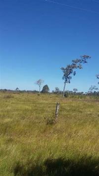 Fazenda de 130 alq.(629 ha.)  Formoso do Tocantins-To