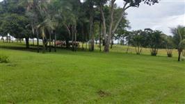 Fazenda de 35 alq. (169 ha.) no município do Varjão