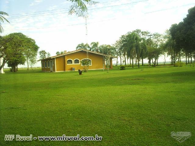 Fazenda 566,28 hectares- 42 Km de Marília, sentido Assis