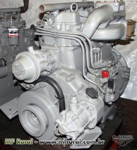 MOTORES MWM 229
