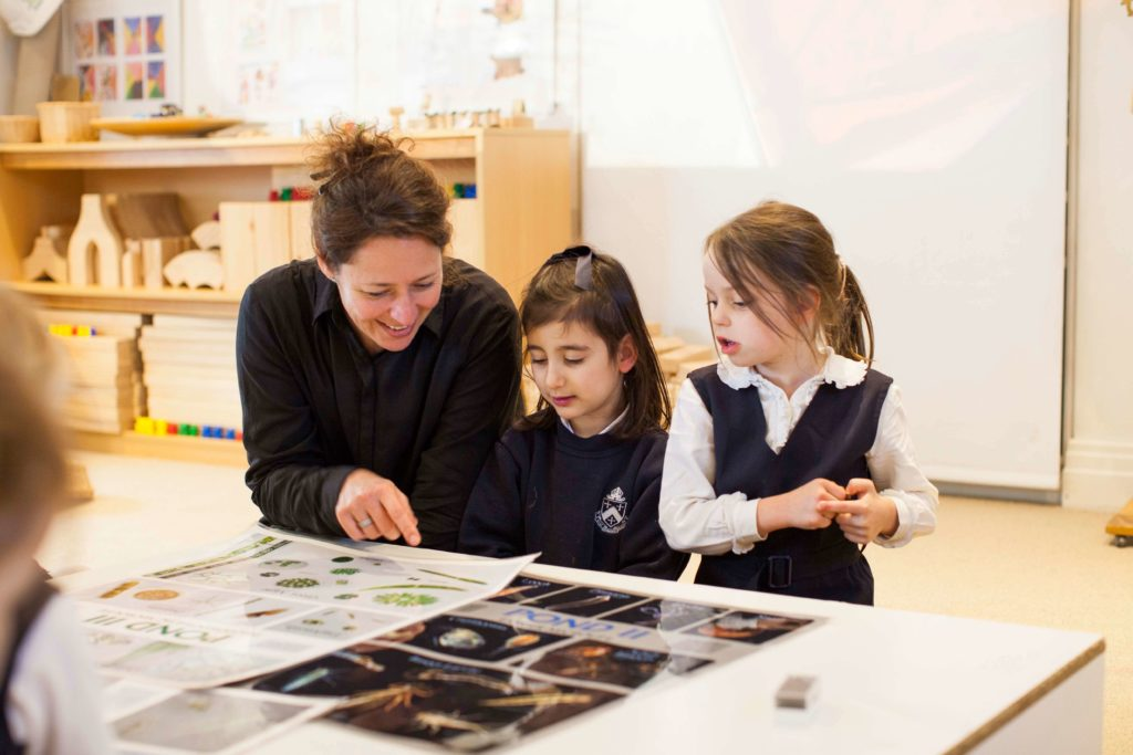 mggs-early-learning-teacher
