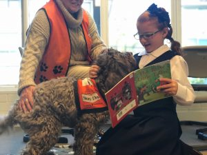 Friendly, happy and calm dogs are trained to work well with children to help them remain calm while reading aloud.